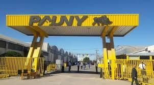 Preocupa en la región el impacto de la crisis en Pauny