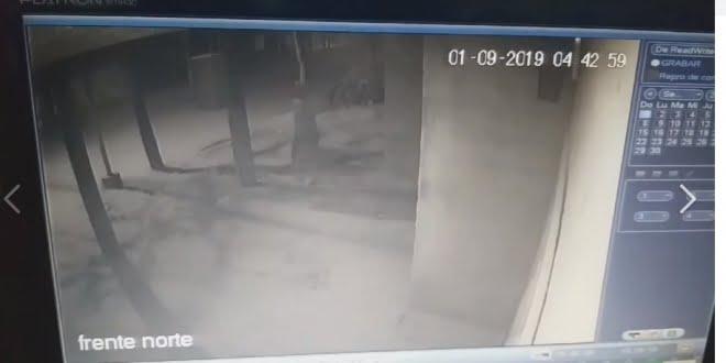 Ladrón robó un reflector y quedó registrado en la cámara de seguridad