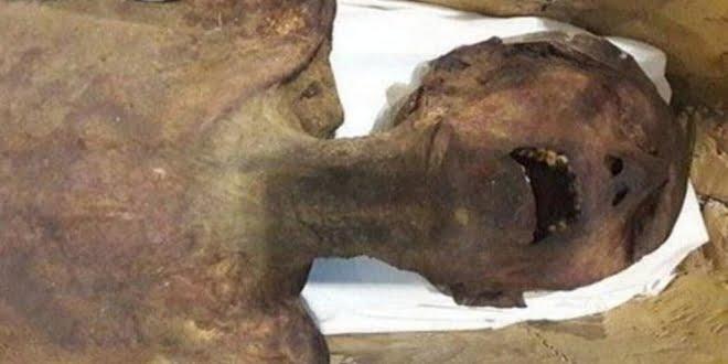 Enigma milenario: científicos egipcios descubren cómo murió la «momia que grita»
