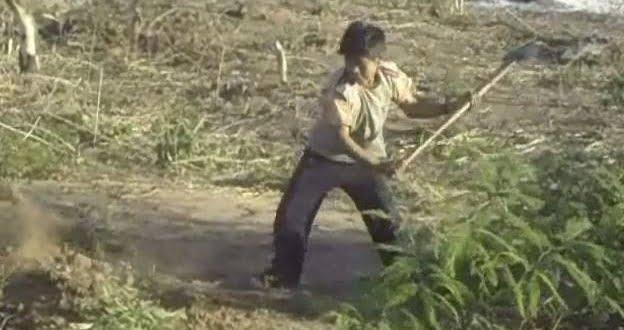 Condenan a una pareja por esclavizar a un menor en un campo de Josefina