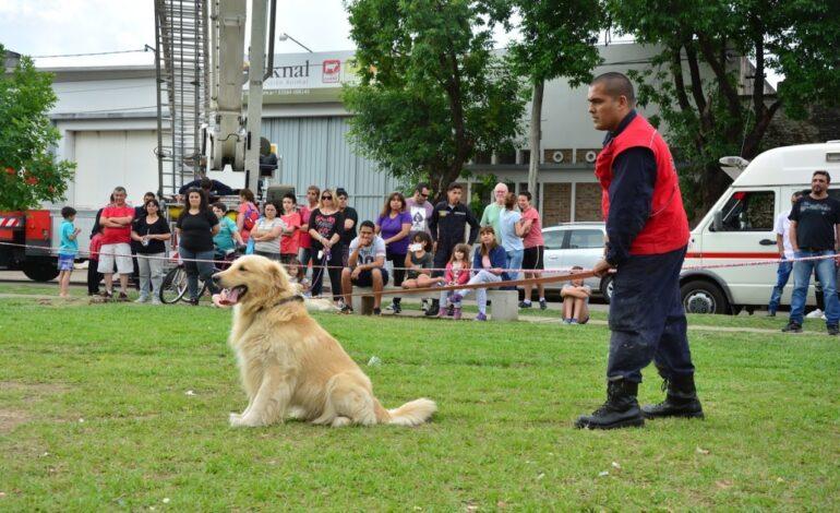 Triste noticia: falleció «Nilo» perro integrante de Bomberos Voluntarios
