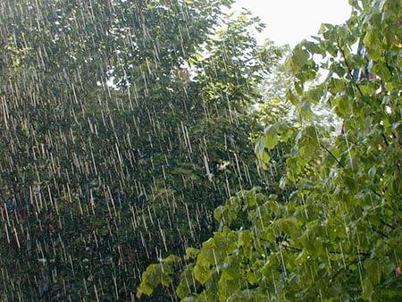 Daños causados por la tormenta en Devoto